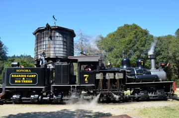 "Locomotive #7 ""Sonora"", Felton, CA, USA"